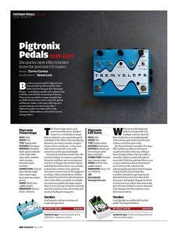Guitarist Pigtronix Philosopher King
