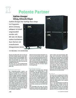 CX 210 Bass Cabinet