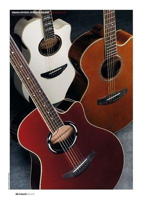Guitarist Yamaha APX500II